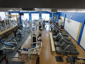 Gym space for Personal trainers to bring their own clients. West Island Greater Montréal image 1