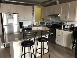 4-Month Summer Sublet - Newly Renovated 2 Bedroom apt.