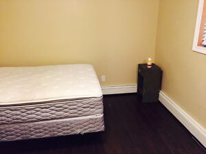 Downtown - Cozy 1 Bed Room for Rent - Quinpool Area