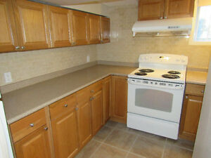 Clean Bright 1 Bedroom Suite - Hamilton West Mountain