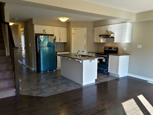 Brand New 4+1 Bedroom Townhouse @Gordon/Clair