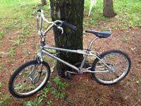 Bmx Bike - Trade for Guitar