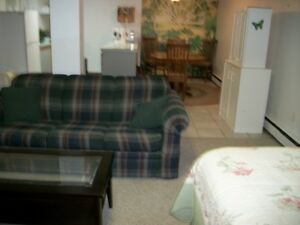 Welland, completely furnished, bachelor/ette basement apartment