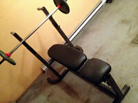 Biodyne heavy duty Workout bench + Bar , solid and good cond