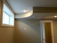 Professional Painter (House or Office)
