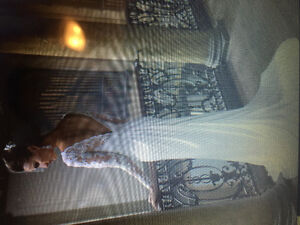 REDUCED! New Never Worn Wedding Gown,Shoe, and Tiara
