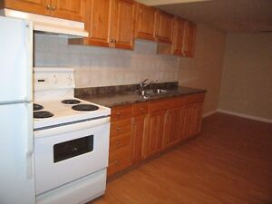 INNISFAIL! Reno'd 1 Bdrm Lower NICE! Utils In! Furnished option!