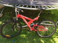 Raleigh adult mountain bike 21 speed