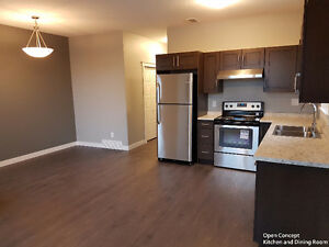 Brand New Upper Unit 2 Bedroom near Douglas Park