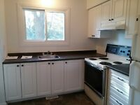 Spacious and Bright 3 Bedroom House in Ottawa Est
