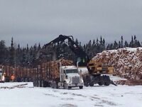 Local logging company looking for drivers