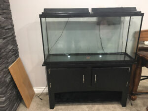 65gallon fish tank and stand with many accessories