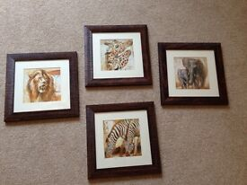 Set of 4 dark framed wildlife safari prints
