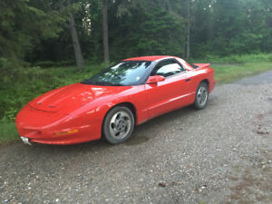 1995 Pontiac Firebird Firebird Coupe (2 door)