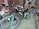SAXON DRIFT bike