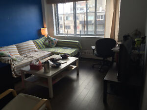 Bright and Clean 3 1/2 downtown McGill All-inclusive