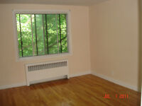 $715/1br - Large clean 3 1/2 in CDN for July (Linton @ Decelles)
