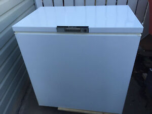 Clean and good working deep freezer and couch for sale
