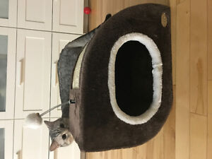 Cat house, almost not used! Free bonus a nice toy:)