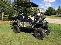 4X4 UTV : Beast 48V 4x4 Electric UTV / Hunting Buggy