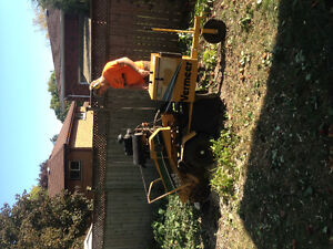 TOP NOTCH TREE SERVICE !!TREE REMOVAL 50% OFF STUMP GRINDING!! London Ontario image 3