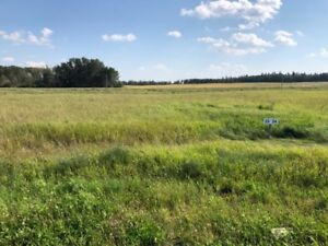 Beautiful land near the lake / investment property