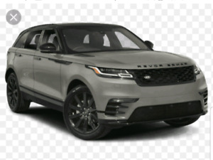 Looking to buy SUV