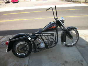 wanted project softail