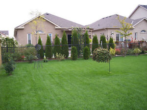 NEW! LAWN MOWING SERVICES - 2015 ACCEPTING NEW CLIENTS Kitchener / Waterloo Kitchener Area image 4