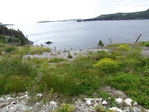 REDUCED !! 3 Acres for a  prime ocean front Residence  Deal !! St. John's Newfoundland image 1