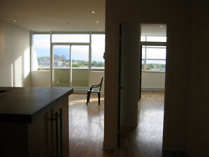 Luminous condo, 4 1/2, Hutchison/Jean Talon