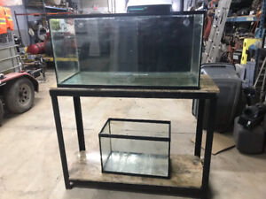 Aquarium and custom made Stand