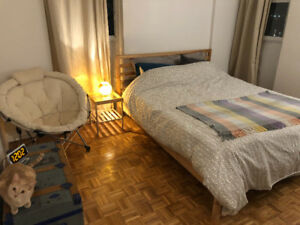 1 bedroom apartment fully furnished for sublet in downtown core