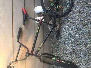 Rockstar energy bike