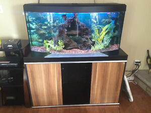 Very nice 75 Gallon Aquarium with accessories and fish