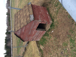 Two XL dog houses-FREE