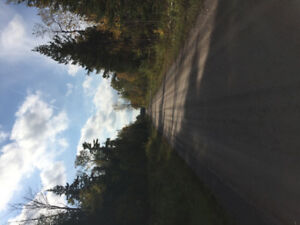 2 Lots for Sale in Marmora, On