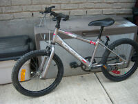 20' CCM Mountain Bicycle