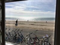 Front Bike Hire, part time shop assistant, Bournemouth seafront