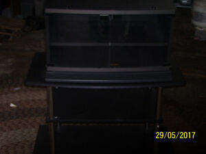 Black Two Piece T V stand