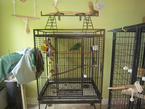 Parrot Cage - Large