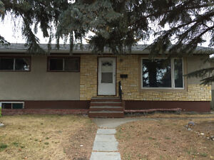 basement for rent forest lawn real estate for sale in