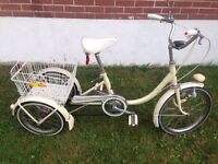 Adult tilting tricycle