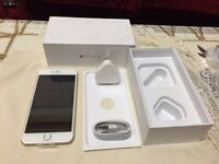 Iphone 6 64GB Gold (new) factory unlocked