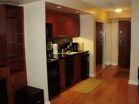 Condo Bachelor -Yonge and Sheppard - available December 01, 2015