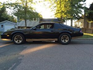 84 Z28 two weeks before winter storage