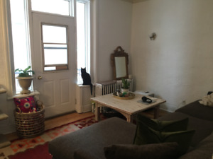 McGill Ghetto 4.5 for rent, walking distance to McGill
