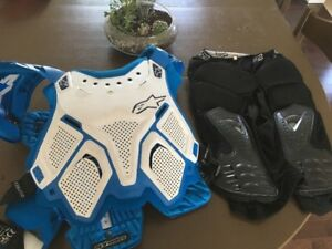 Alpinestar A10 Chest protector and Fox Shorts protector