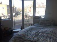 En-suite Room in Central London (JUNE - SEPT.)