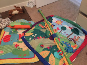 Two activity mats